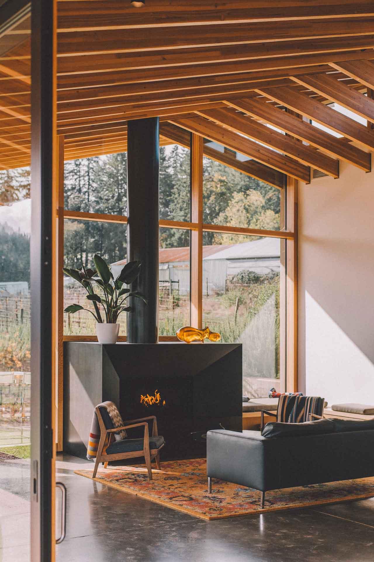 Butacas modernas y sofa principal
